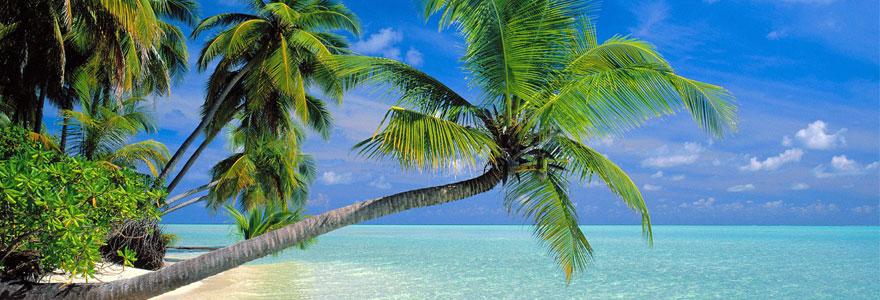Catégorie voyage maldives